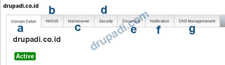 DNS Management