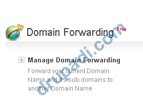 Domain Forward